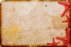 det paper havet shells tappning Arkivbild