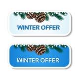 Det pappers- vintererbjudandet, blåa klistermärkear på den vita bakgrunden - julförsäljningsetikett med med pinecones och fattar Fotografering för Bildbyråer