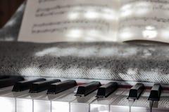 Det perfekta pianot stämmer i milt solljus med beteckningssystemet Fotografering för Bildbyråer