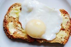 Det perfekta tjuvjagade ägget Royaltyfria Foton
