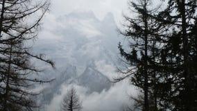 det räknade liggandeberg sörjer snowsprucevinter Royaltyfri Fotografi
