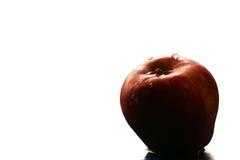 det röda äpplet vätte Fotografering för Bildbyråer
