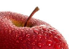 det röda äpplet vätte Arkivfoto