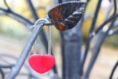 Det röda låset i form av en hjärta hänger på en filial av ett järn december royaltyfria foton