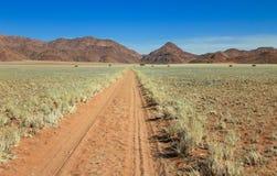 Det raka ökengrusvägspåret passerar grässlätten in mot berg Arkivbild