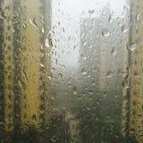 DET regnar katter och hundkapplöpning utanför Arkivbild