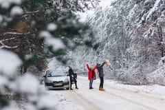 Det roliga företaget med behandla som ett barn lite på en snöig väg under vinter sörjer träd Royaltyfri Foto