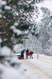 Det roliga företaget med behandla som ett barn lite på en snöig väg under vinter sörjer träd Royaltyfria Bilder