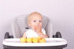 Det roliga lilla barnet som äter en aprikos behandla som ett barn in, stol mot den gråa bakgrunden Royaltyfria Foton