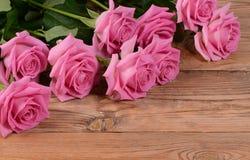 Det rosa härligt steg en bakgrund Royaltyfria Bilder