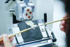 Det roterande Microtomeavsnittet för diagnos i patologi gör microsc arkivbild