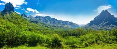 Det Rotui berget med fjärden för kock` s och Opunohu skäller på det tropiska pet Royaltyfria Foton