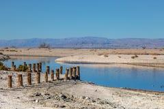 Det Salton havet royaltyfria foton