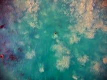 Det sandiga blåa havet och brunalg i Kalifornien sköt från över, från himlen Royaltyfria Foton