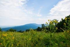 Det sceniska sommarlandskapet förbiser på PA för den drevShenandoah medborgaren Royaltyfria Bilder