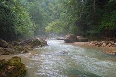 Det snabba flödet av floden Kurdzhips Royaltyfri Foto
