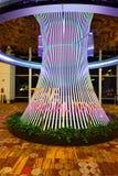 Det sociala trädet Royaltyfria Bilder