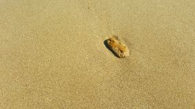 Det soliga havet överför med stenen royaltyfria foton