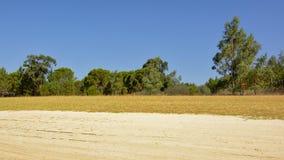 Det soliga landskapet med torr jord och gräs och sörjer träd, Portalegre, Portugal Fotografering för Bildbyråer