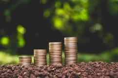 Det sparande pengarbegreppet med pengarmyntet staplar att växa Arkivfoto