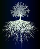 Det specificerade trädet av livneon skissar Royaltyfri Fotografi