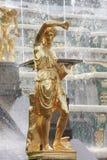 Det statliga museet Peterhof Arkivfoton