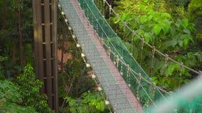 Det Steadicam skottet av en hängande upphängningbro i Ecoen parkerar i den Kuala Lumpur staden lager videofilmer