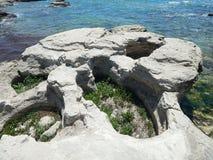 Det steniga havet seglar utmed kusten Royaltyfria Foton