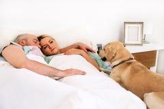 Det stiliga paret i säng sover tillsammans i anslutning med hunden royaltyfri foto