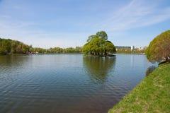Det stora dammet i Tsaritsyno parkerar Royaltyfria Bilder