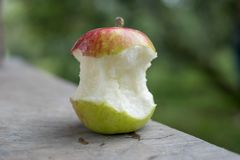 Det stora röda och gröna äpplet var tuggan Royaltyfria Foton