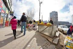 Det stora valet av blommor på provisoriet marknadsför i staden Fotografering för Bildbyråer