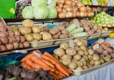Det stora valet av nya frukter och grönsaker på marknad kontrar royaltyfria foton