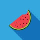 Det stora vattenmelonskivasnittet med kärnar ur framlänges illustrationen för vektorn för bakgrund för blått för designsymbolssom Royaltyfria Bilder