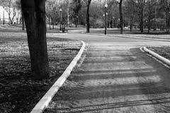 Det svartvita fotoet av staden parkerar Royaltyfri Bild