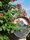 Det thailändska huset reflekterar i en vägspegel som lokaliseras i en blommabuske royaltyfria foton