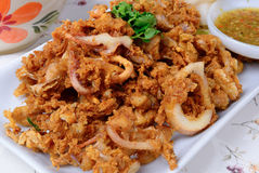 Det thailändska skaldjurnamnet är den djupt stekte tioarmade bläckfisken med vitlökpeppar Arkivbild