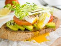 Det tjuvjagade ägget, tomaten och avokadot på helt vete rostar toppning med Royaltyfria Bilder