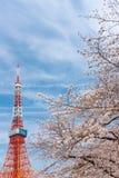Det Tokyo tornet och Sakura Cherry blomstrar i vårsäsong på Tokyo, Japan royaltyfri fotografi
