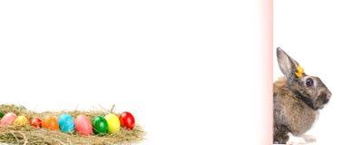 Det tomma kortet med easter färgade ägg och kaninen Arkivbilder