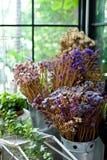 Det torra bladet och filialen blommar i vas, eller krukan i trädgårds- hemmastatt är t Royaltyfri Foto