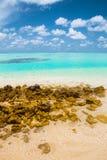 Det tropiska havet Royaltyfri Foto