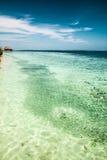 Det tropiska havet Arkivfoton