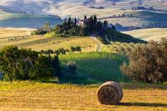 Det Tuscan landskapet arkivbilder