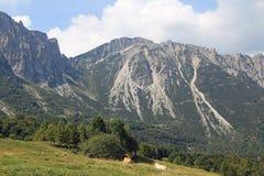 det underbara landskapet av italienska berg kallade Venetian Prealps Arkivfoton