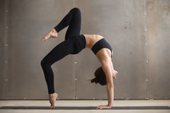 Det unga attraktiva kvinnaanseendet i bro poserar, grå studiobaksida Royaltyfri Bild