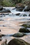 Det ursprungliga vattnet av den Savegre floden Costa Rica Fotografering för Bildbyråer