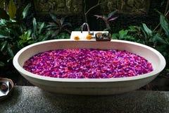 Det utomhus- badet med tropiska rosa färger blommar för kopplar av Spa organisk arkivbild