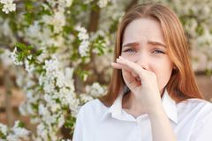 Det utomhus- skottet av ledsna stressade härliga unga kvinnliga rubs nose, som har allergin som blomstrar, bär den eleganta vita  arkivfoton