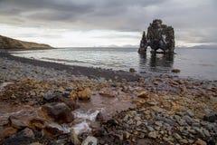 Det världsfrämmande vaggar bildande av Hvitserkur, nordliga Island Arkivfoto